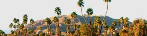 cropped-palmsprings.jpg