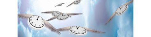 cropped-timeflies.jpg