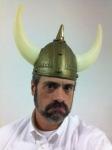 Viking Horns 2