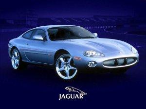 jaguar cars (37)
