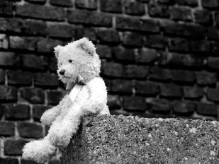 lonelybear